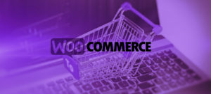 developpeur woocommerce