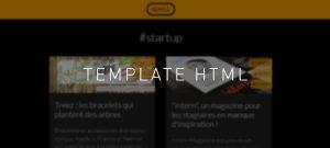 Sensa Template html